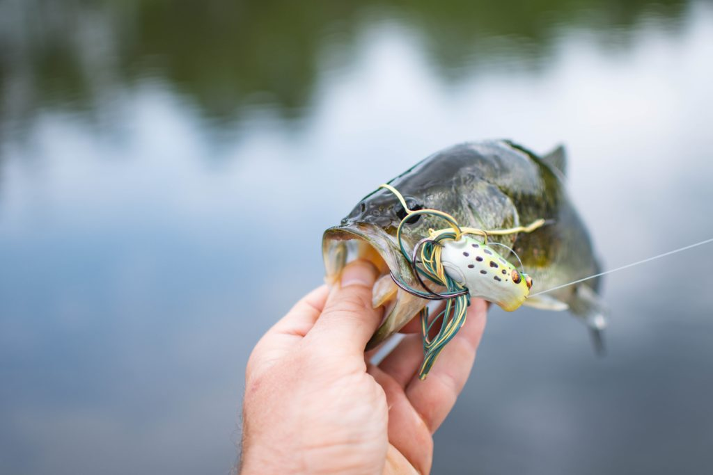 All of the survival fishing tips won't help you unless you prepare.